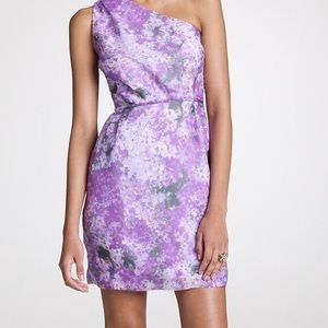 NWOT Collection Watercolor Bridget Dress